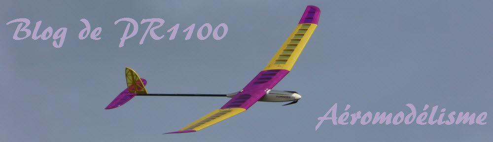 ¶R1100 Weblog